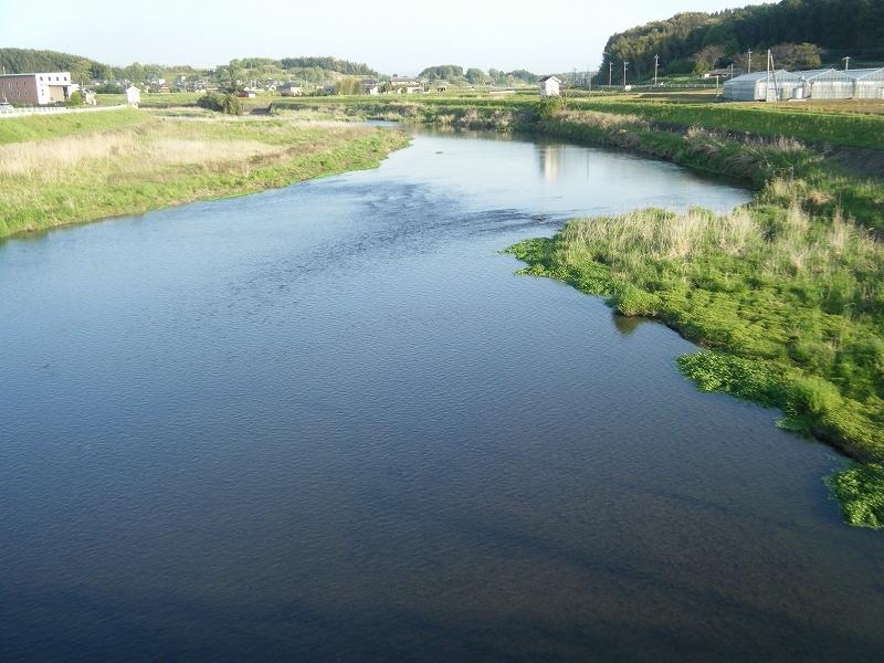 合志川 (熊本県熊本市、菊池市)