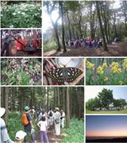 敷地造成における生態系の保全・再生