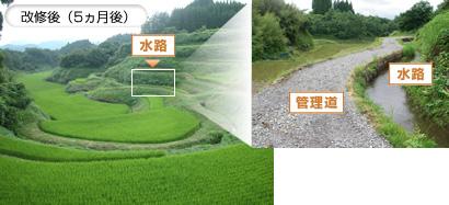 文化的景観の保全・整備