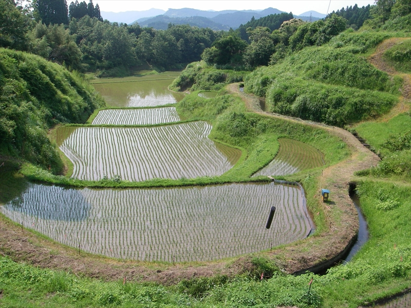 文化的景観の保全対策 通潤用水・下井出水路(熊本県山都町)