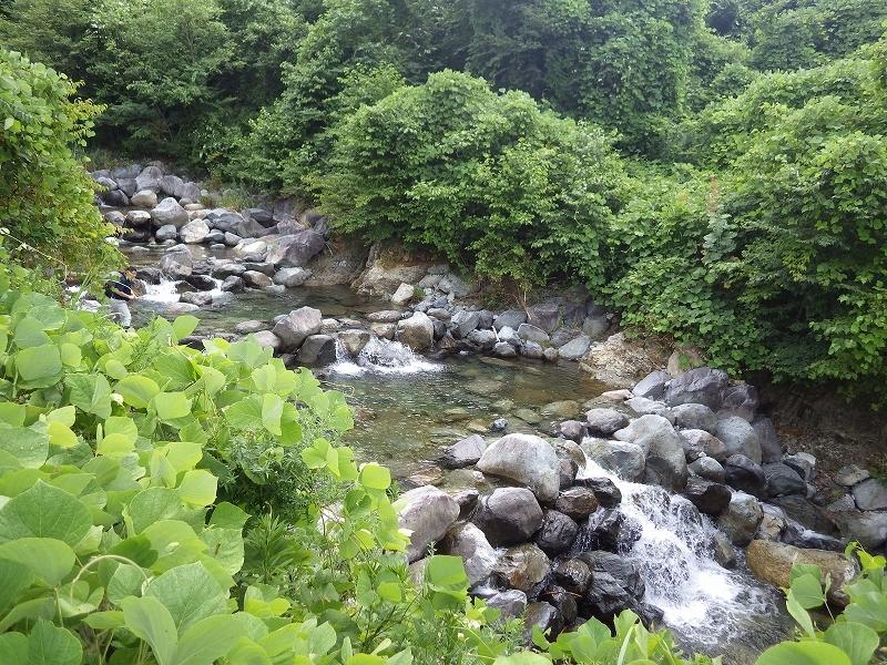 砂防河川における川づくり 竹原川(岐阜県下呂市)