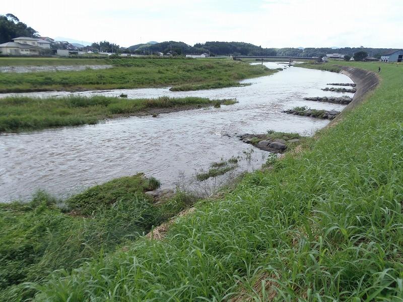 沖積砂礫河川における川づくり 合志川(熊本県熊本市、菊池市)