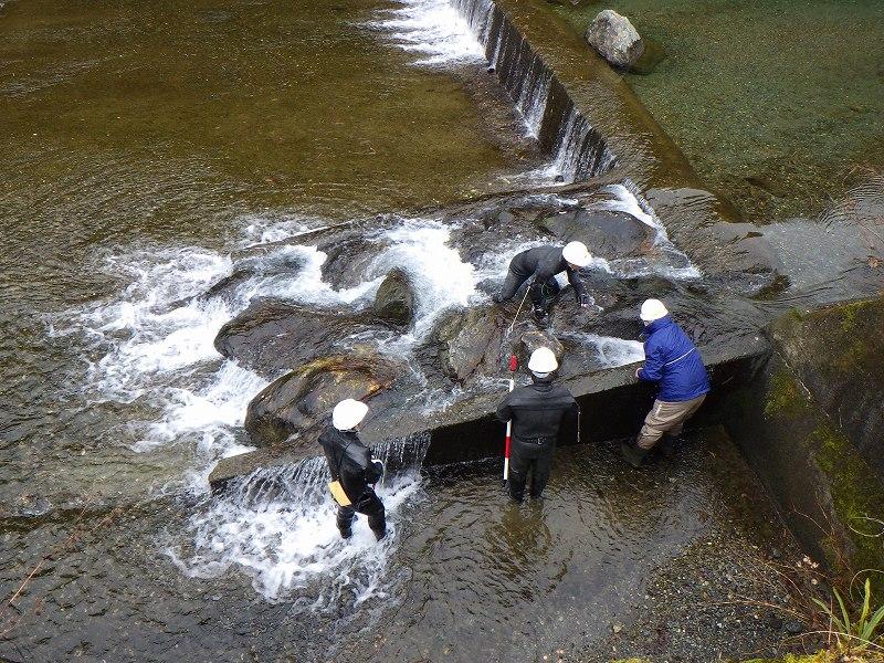 河川調査3