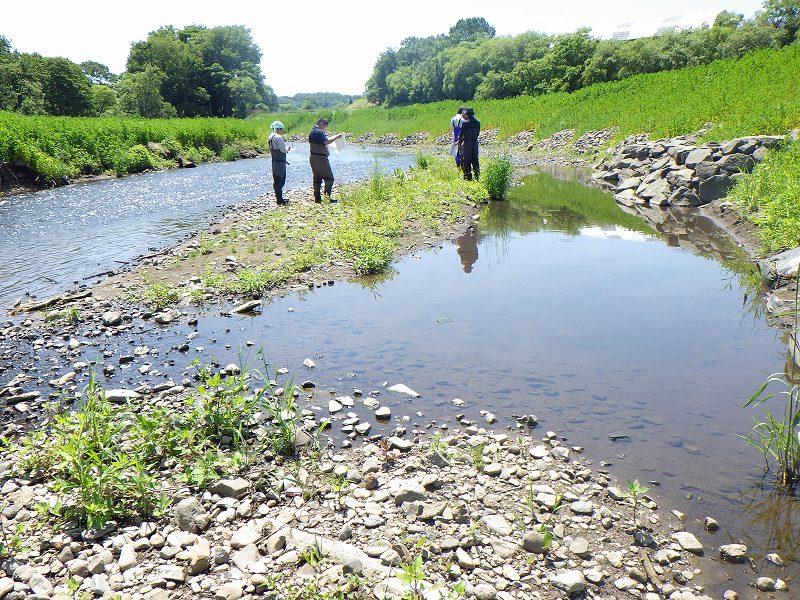 河川調査2
